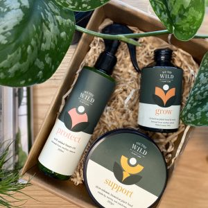 We the Wild Plant Care Pack