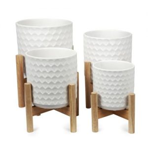 Shell Pot with Wooden Legs in White